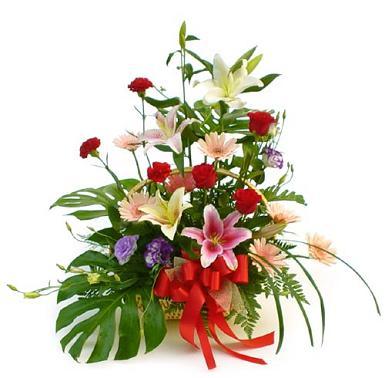 St. Maarten Flowers - Florist